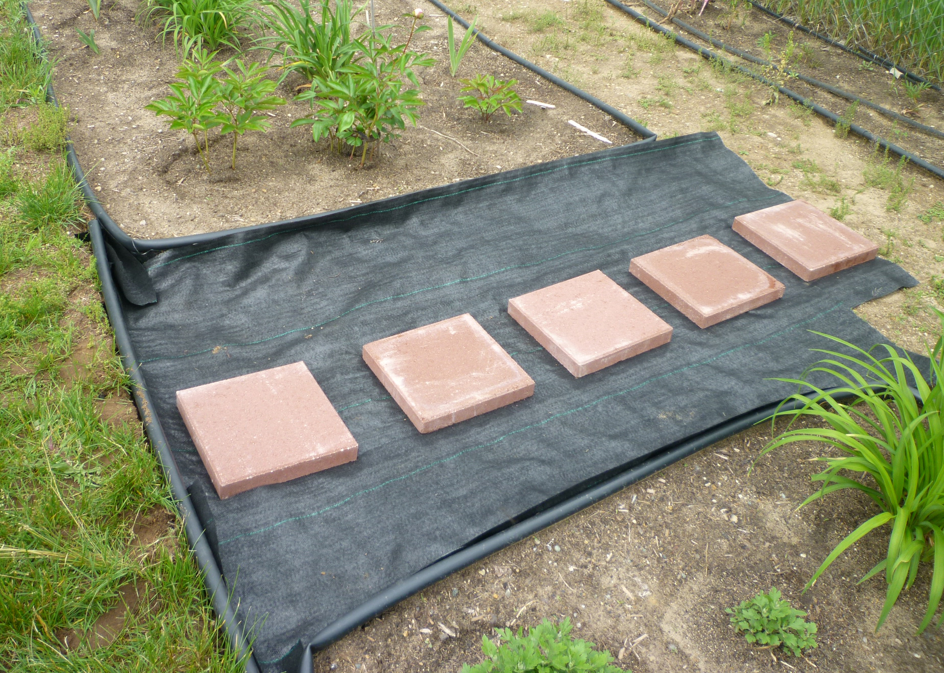 How to make a garden path with gravel - Garden Pathways With Stepping Stones Before Gravel