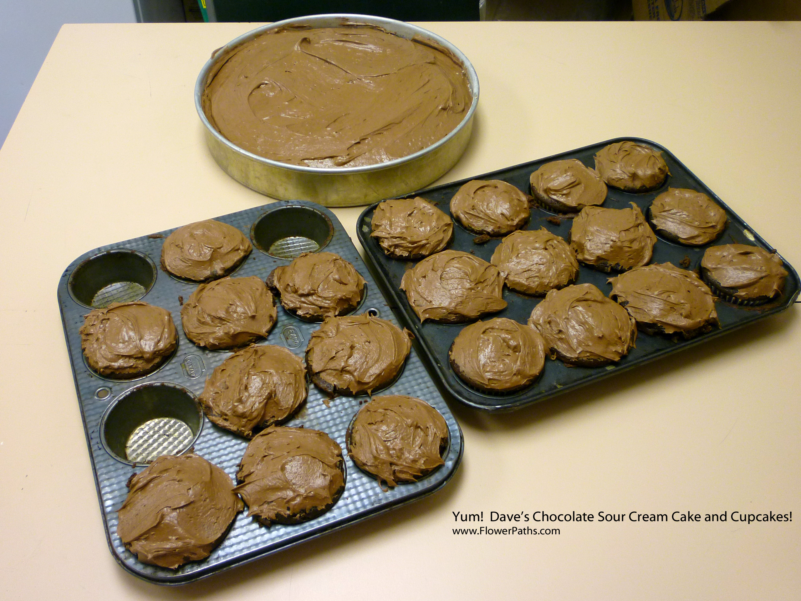 Dave's Easiest Yummy Sour Cream Chocolate Cake and Cupcakes – So Easy and So Good!